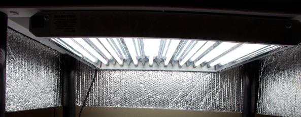 FFGS-M5 fluorescent