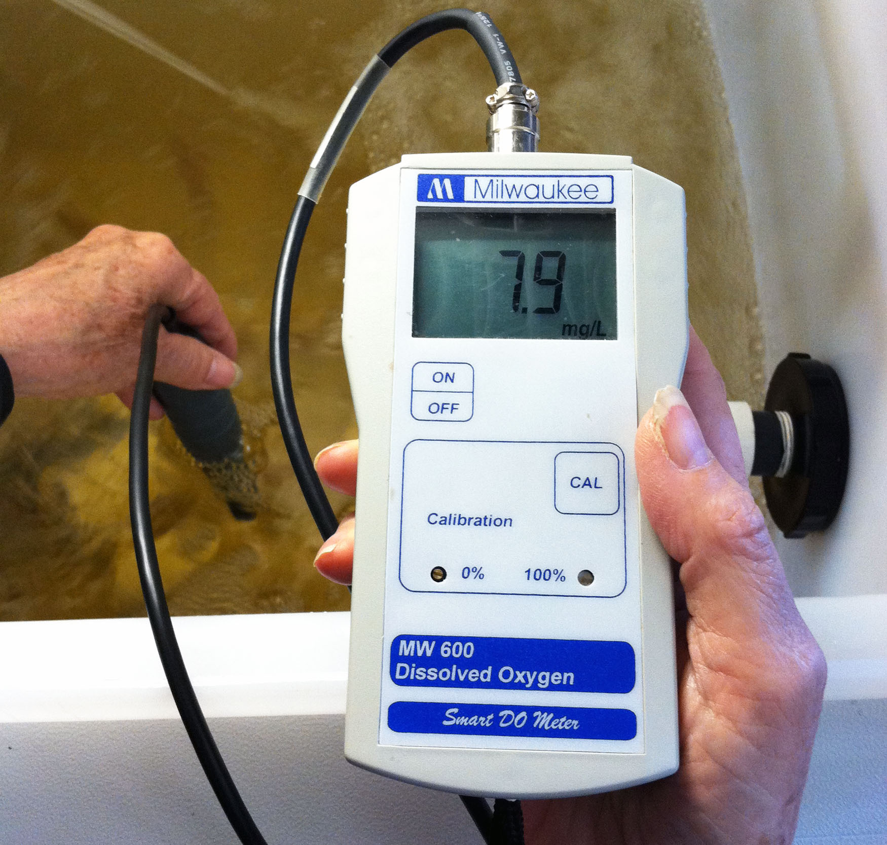 DO Meter Reading the level of Dissolved Oxygen in the Mini FFGS-M5 Fish Tank